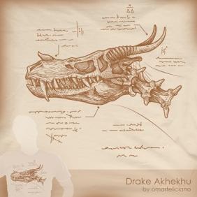 Drake Akhekhu 2 ShirtComp500