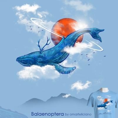 Balaenoptera